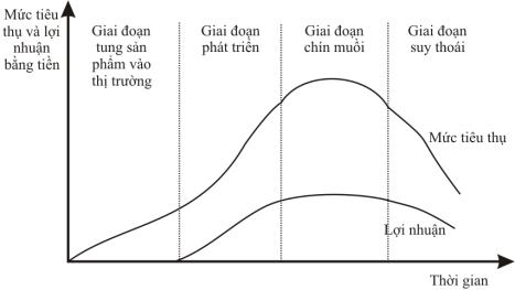 vong-doi-cua-mot-san-pham